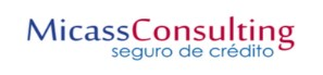 MICASS CONSULTING - AGENCIA EXCLUSIVA